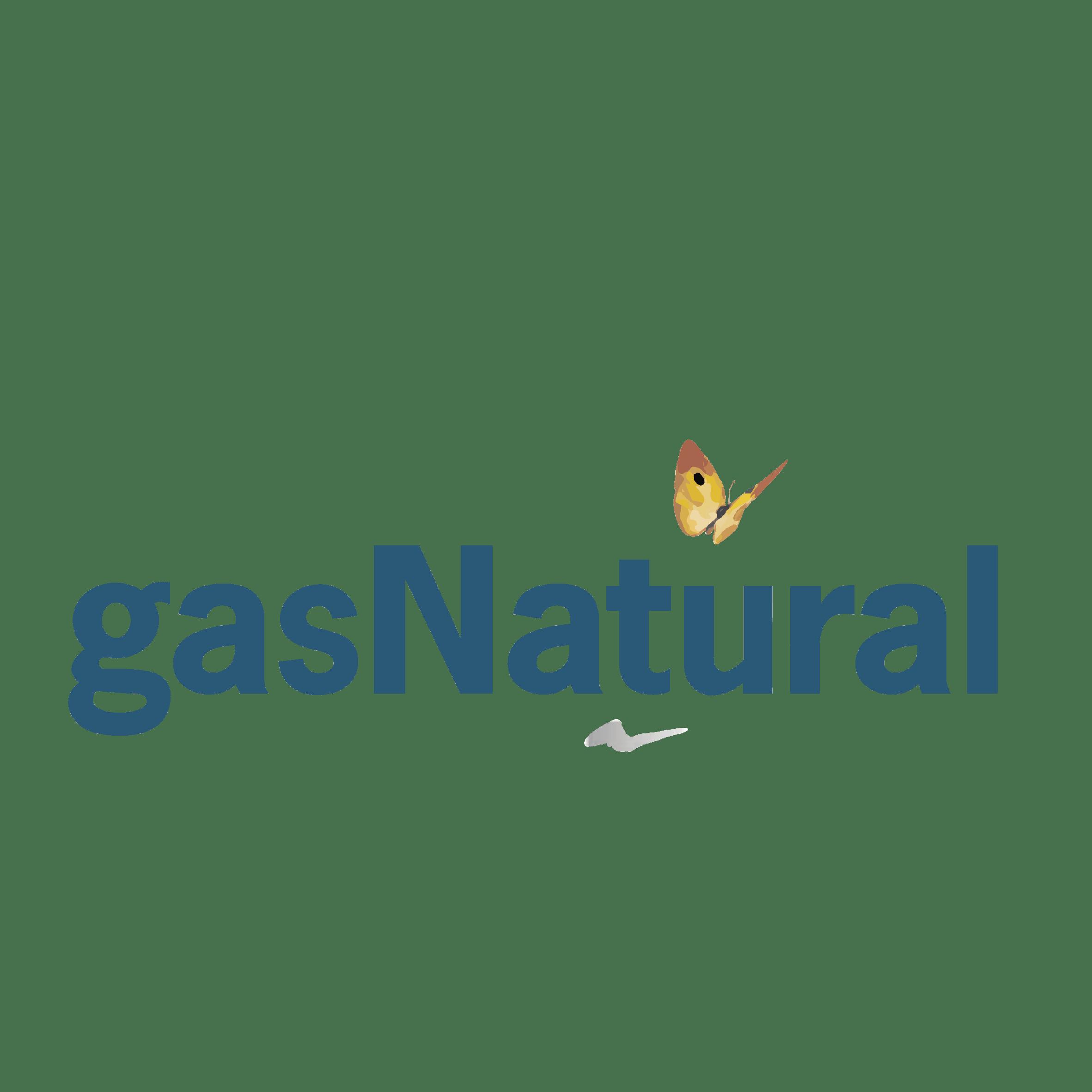 Responsabilidad Ambiental- Gas Natural