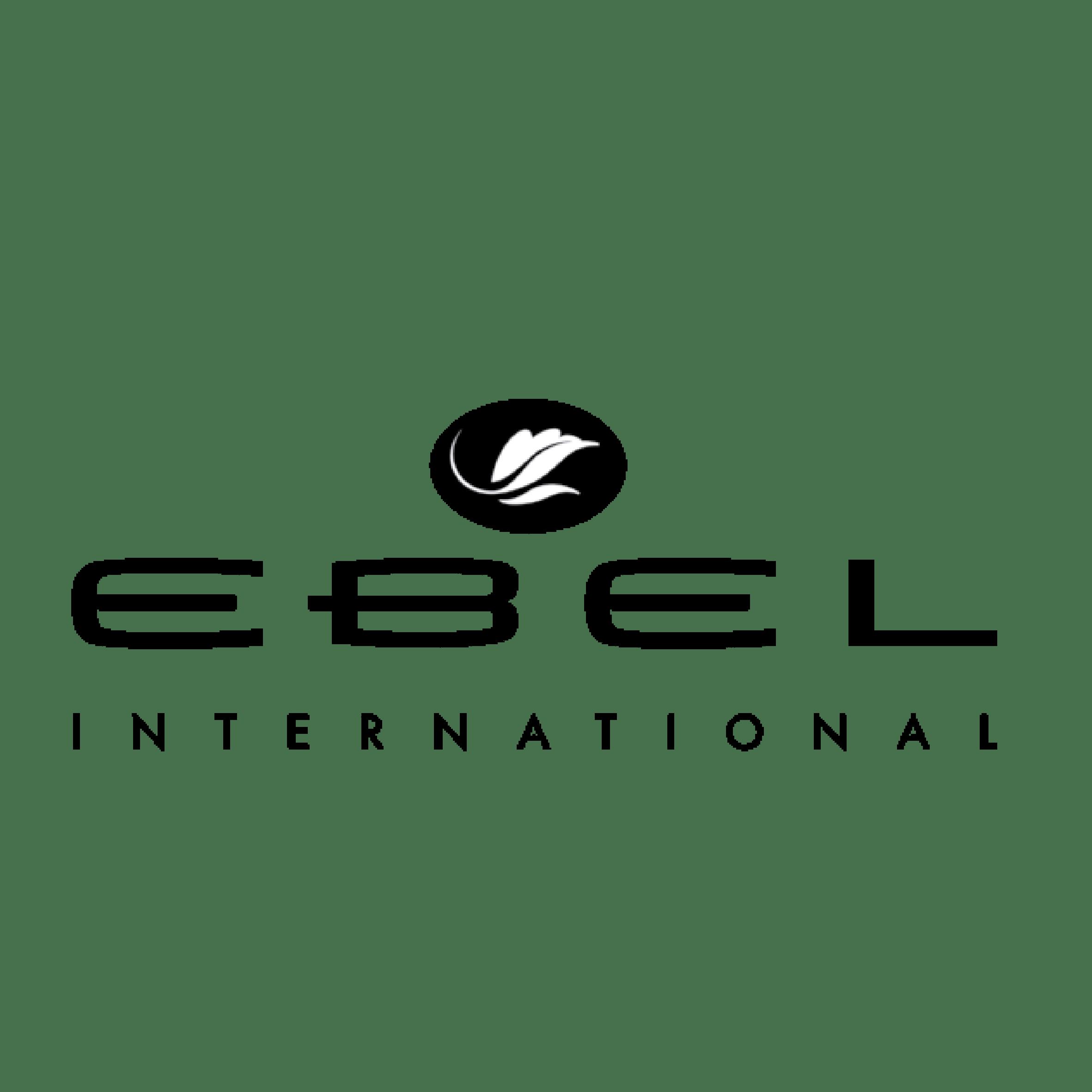 Responsabilidad Ambiental- Ebel